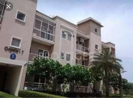 I want sale my flats Near Hema malini's awas