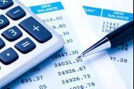 Tax and Financial Consultant
