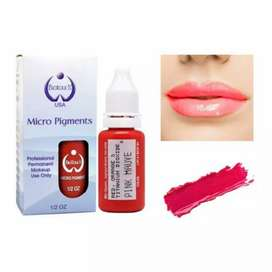Permanent Make up pen eyes brows and lips stick