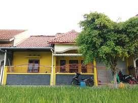 Dijual Rumah Murah di Yogyakarta Tanpa Perantara