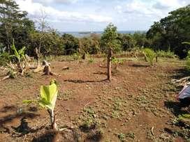 Tanah Bukit View Pulau Umang Cocok utk Investasi Wisata & Perkebunan