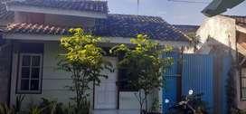 Disewakan/Dikontrakan Rumah Siap Huni Sedayu (Free Listrik dan Air)