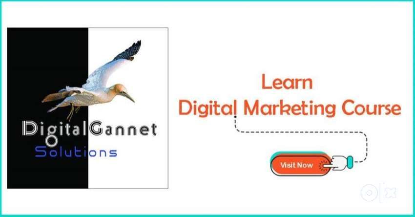 Digital Marketing Course with 100% placement 0
