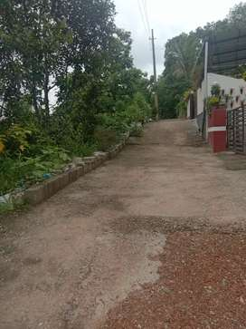 Newly house and 11 cend plot for sale