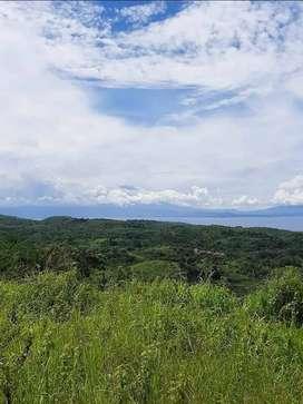 Dijual tanah 7,5 hektar di desa tanglad nusa penida
