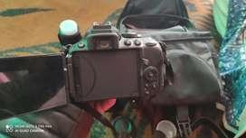 Nikon 5300d   on rent