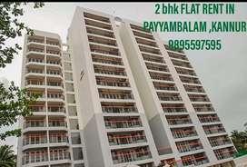 2 bhk flat for rent in payyambalam,kannur near :montissory school