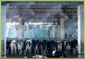Mist System For Dairy Farms, Poultry Farms, Lawns, Sprinkler System