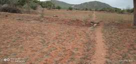 3 Acre agriculture land for sale in near Nilakottai