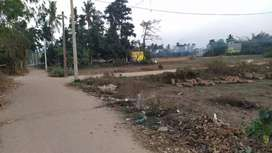 GOOD ELECTRICITY, PITCHU ROAD, BOUNDARY PLOT  Baranga Rs. 800/sqft.