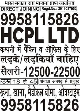 JOBS OPENING IN HCPL PRIVATE LTD FOR GIRLS/BOYS