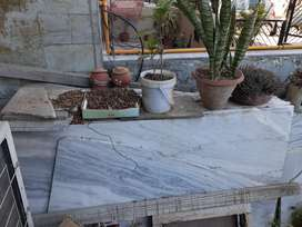 Makrana dungri marble approx 500+sq ft
