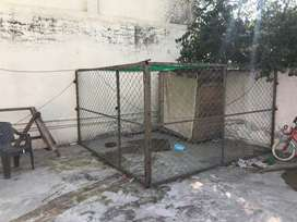 Cage available