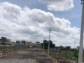 Isnapur/pashamylaram Road Good Investment plots for sale (6 Plots)