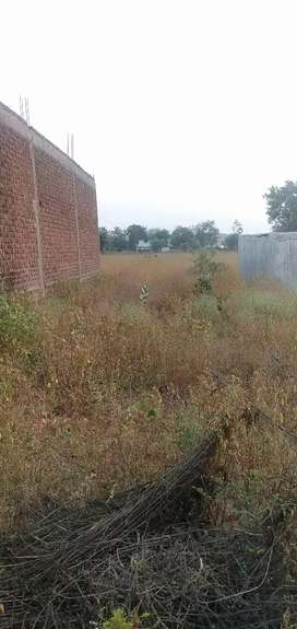 Plot 20 by 60 agricultural land
