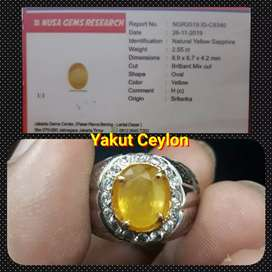 Natural Yakut / Yellow Safier Ceylon Srilanka