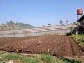 Tanah Murah dibandung barat pinggir jalan desa, jln umum sudah row 6M
