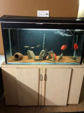 Aquarium for sale in good condition