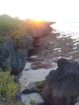 Dijual Tanah Tebing Los Pantai Wee Kambala Tambolaka Sumba Barat Daya