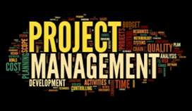 Software project marketing manager-