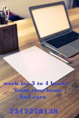 Internet based work for Graduates in Delhi-NCR. • Require