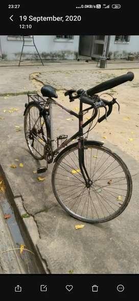 Racing cycle
