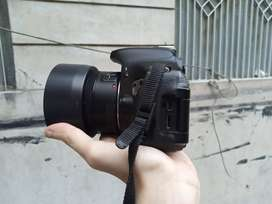 Canon EOS 600D (Just byu and Capture)