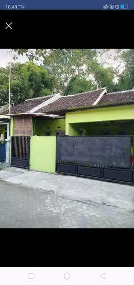 Rumah perumahan ostium