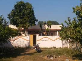 1 canal plot with 8 marla house for urgent  sale .