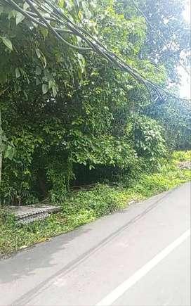 Tanah lokasi di jalan penataran pererenan Mengwi Badung