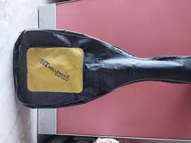 Challenger apex special acoustic guitar