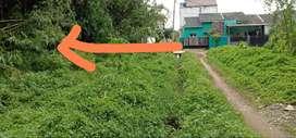 Jual Cepat Tanah Kavling Pinggir Jalan Desa Cipogo Cisauk 338m²