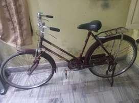 Neelam company cycle