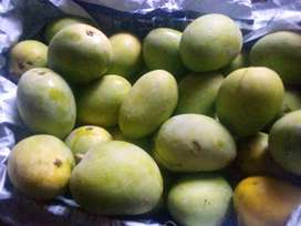 Multani mangose in Lahore juicy and unmatchable and unbeatable quality