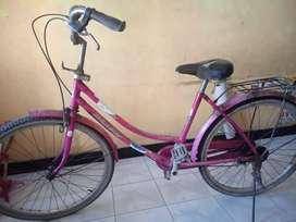 sepeda mini normal apa adanya.