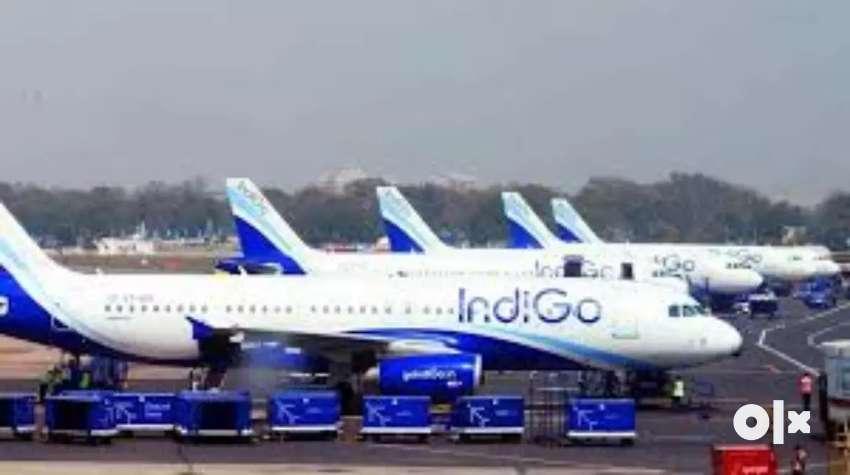 New vacancies in Indigo Airlines 0