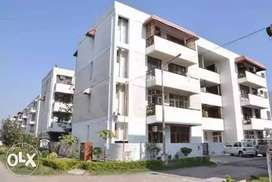 Two room flat for sale in chandigarh