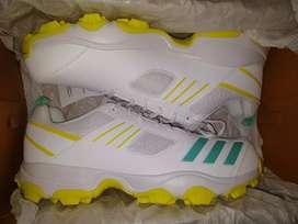 Adidas Cricket shoes