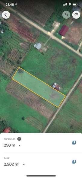 Dijual Tanah Kavling 2500 m2 di Aimas, Sorong, Papua Barat