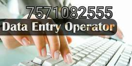 required data entry work and data formatting from home
