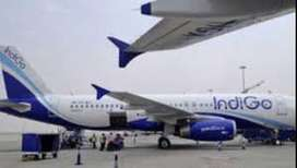 Urgent Hiring for Airport & Airline Job's in Jodhpur.