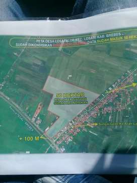 tanah 50 ha di brebes
