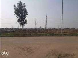 300 gaj Corner plot Aerocity Mohali