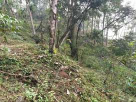 Road side Land for sell for resort Gangtok
