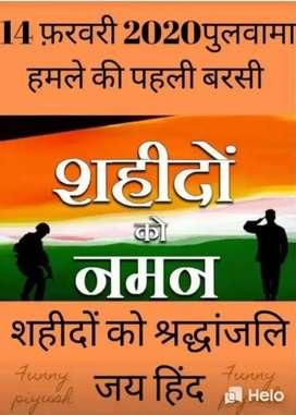 Bhanvad Bharatpur ma vadi