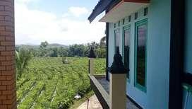 Tanah Rumah View Candi Borobudur