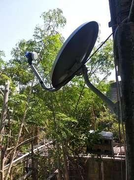 Antena jaman now