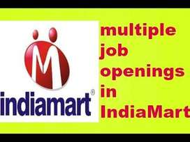 INDIA MART Back office Executive/ CCE job openings
