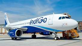 Welcome to Indigo airlines