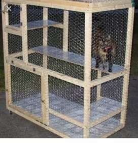 Cat / Special Cage For Cats